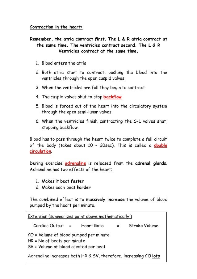 igcse bio notes Igcse grade 11 and grade 12 biology study notes and revision guide biology exam past papers and revision guide our notes cover the latest specifications.