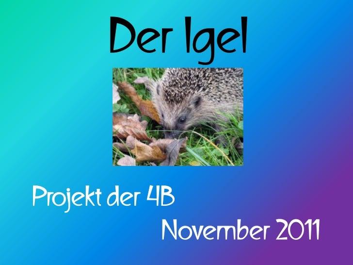 Der IgelProjekt der 4B             November 2011