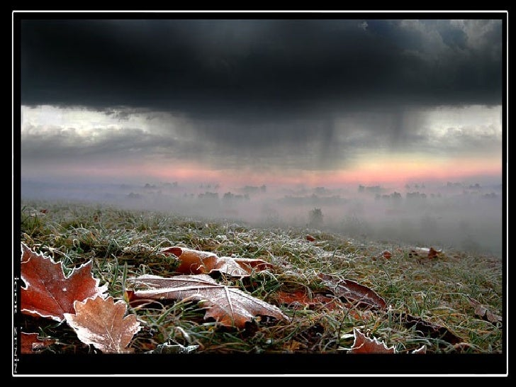 Igor Zenin-photograps