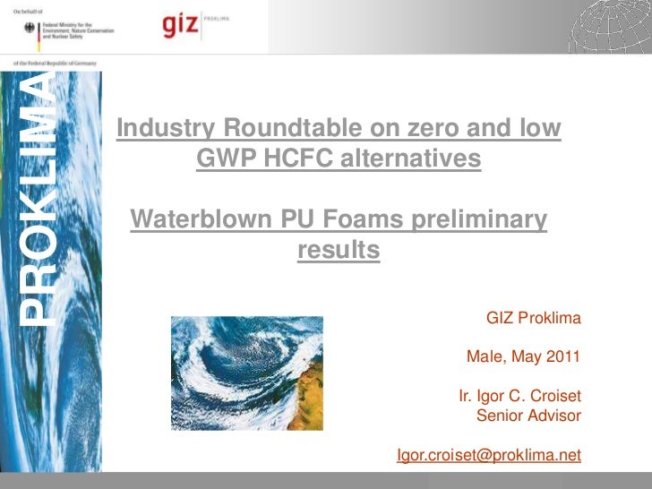 Industry Roundtable on zero and low GWP HCFC alternatives<br />Waterblown PU Foams preliminary results<br /><br />GIZ Pro...
