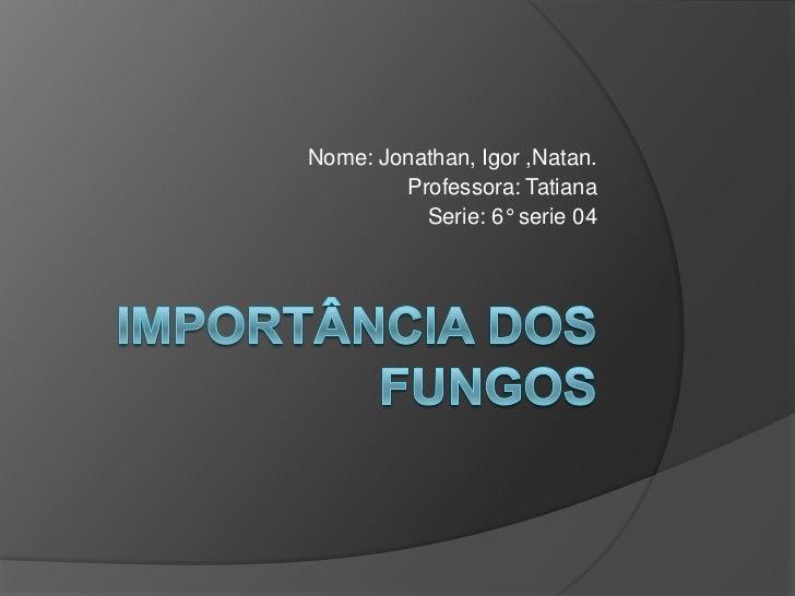 Importância dos fungos<br />Nome: Jonathan, Igor ,Natan. <br />Professora: Tatiana<br />Serie: 6° serie 04<br />
