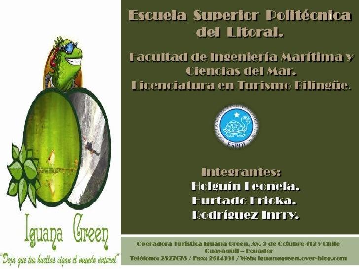 Iguana green tour