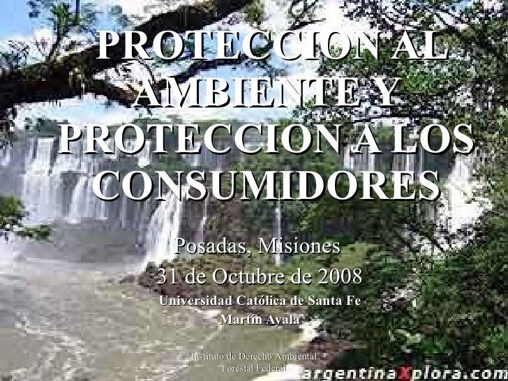 PROTECCION AL AMBIENTE Y PROTECCION A LOS CONSUMIDORES Posadas, Misiones  31 de Octubre de 2008 Universidad Católica de Sa...