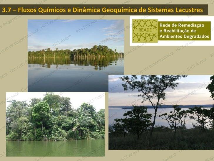 3.7 – Fluxos Químicos e Dinâmica Geoquímica de Sistemas Lacustres