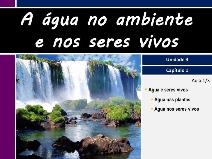 III.1 Água no ambiente e nos seres vivos