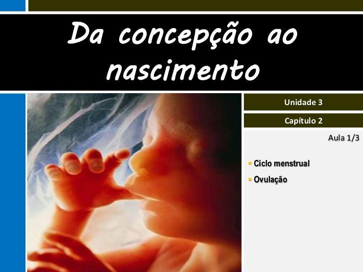 III.2 Da concepção ao nascimento