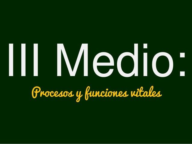III Medio:Procesos y funciones vitales