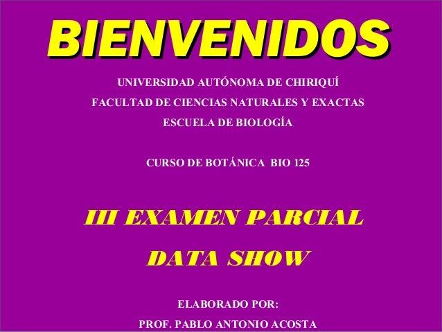 UNIVERSIDAD AUTÓNOMA DE CHIRIQUÍ FACULTAD DE CIENCIAS NATURALES Y EXACTAS ESCUELA DE BIOLOGÍA CURSO DE BOTÁNICA BIO 125 II...