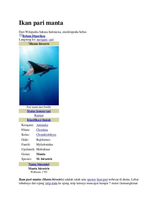 Ikan pari mantaDari Wikipedia bahasa Indonesia, ensiklopedia bebas  Belum DiperiksaLangsung ke: navigasi, cari      ?     ...