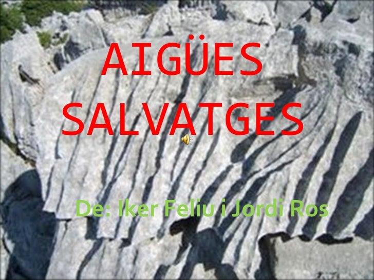 AIGÜES SALVATGES De: Iker Feliu i Jordi Ros