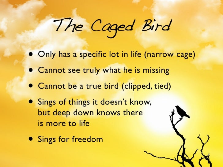 I know why the caged bird sings?!?!?!?