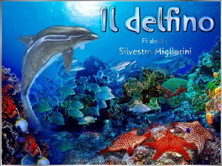 Il Delfino (Fiaba Sonora Di Silvestro Migliorini) Con Musica