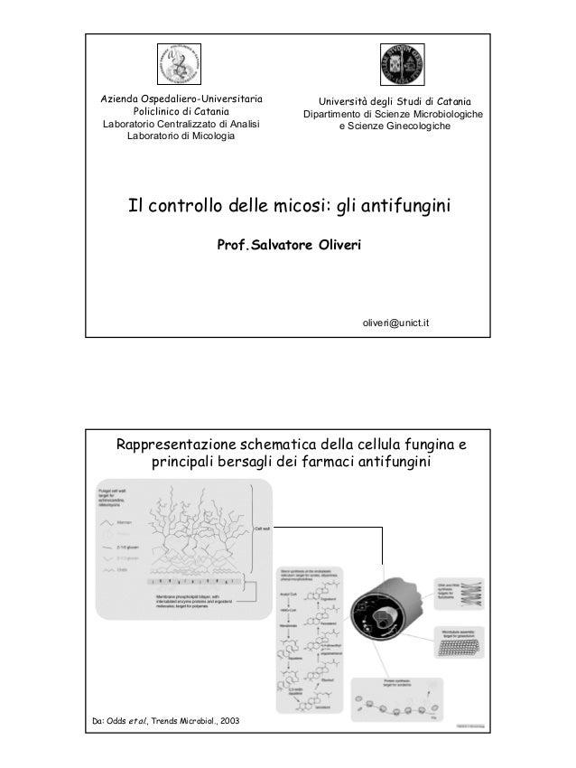 Azienda Ospedaliero-Universitaria               Università degli Studi di Catania        Policlinico di Catania           ...