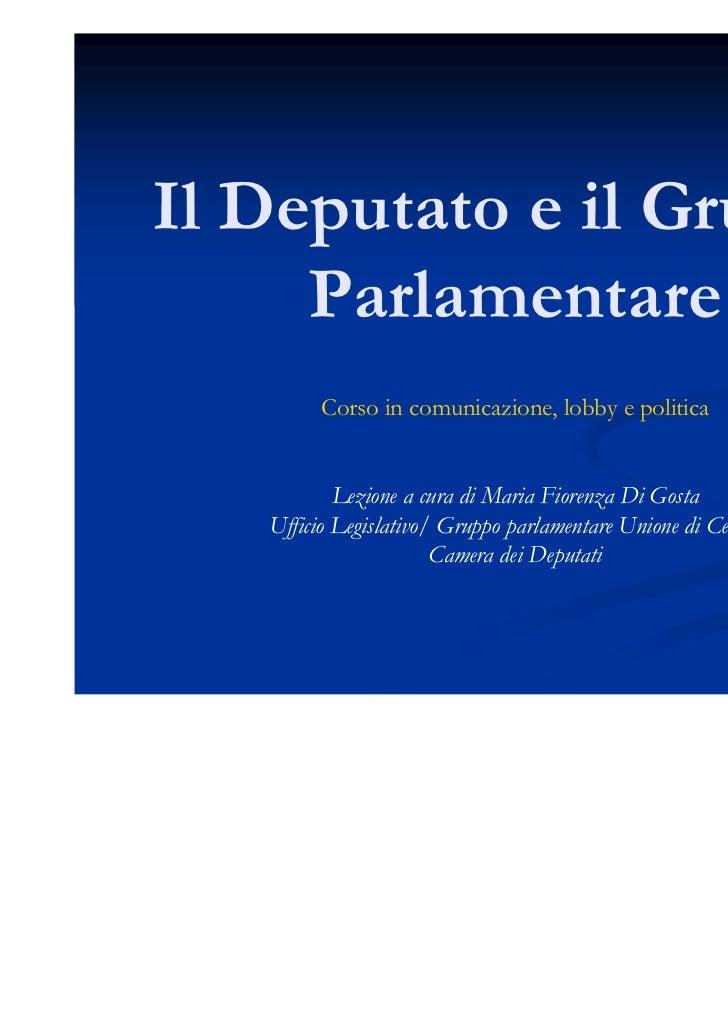 Il deputato e il gruppo parlamentare