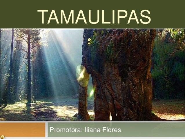TAMAULIPASPromotora: Iliana Flores