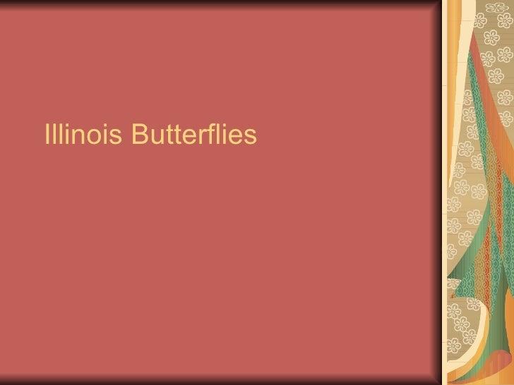 Illinois Butterflies