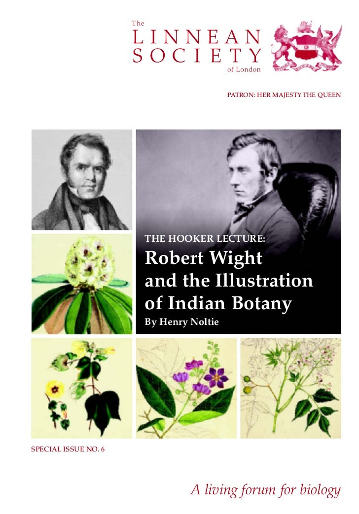 Illustration of Indian Botany by Henry Noltie