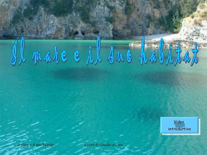 Il mare e il suo habitat Video  introduttivo
