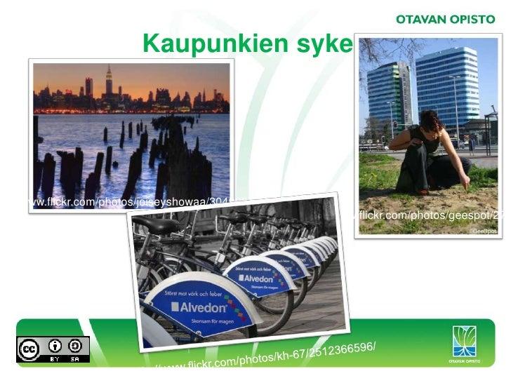 Otavan Opiston ilmiöt 2010-2011