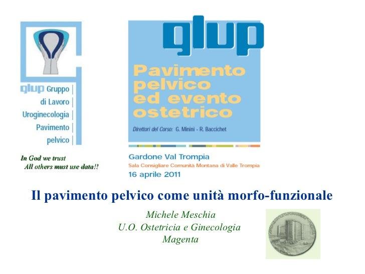 Il pavimento pelvico come unità morfo-funzionale Michele Meschia U.O. Ostetricia e Ginecologia  Magenta In God we trust Al...