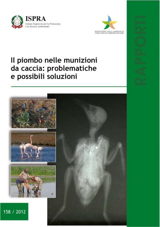 Ambiente - Il piombo nelle munizioni da caccia - Problematiche e possibili soluzioni - Rapporto 158-2012