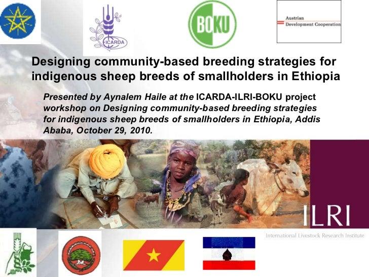 Designing community-based breeding strategies for indigenous sheep breeds of smallholders in Ethiopia