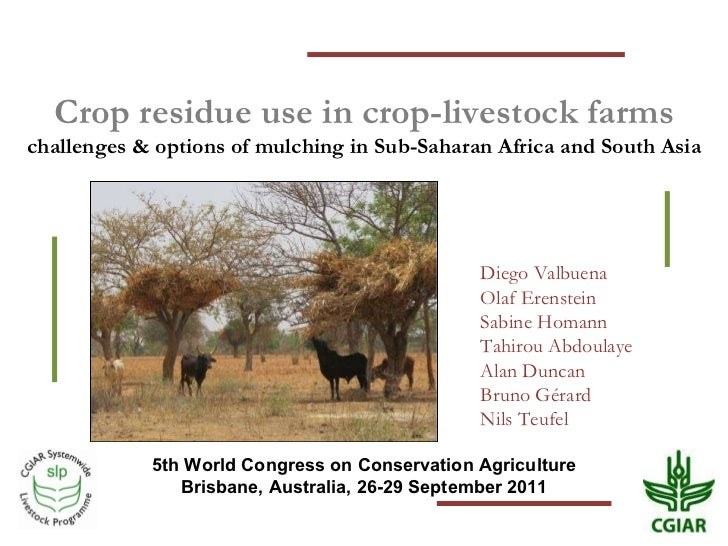 Crop residue use in crop-livestock farms challenges & options of mulching in Sub-Saharan Africa and South Asia 5th World C...