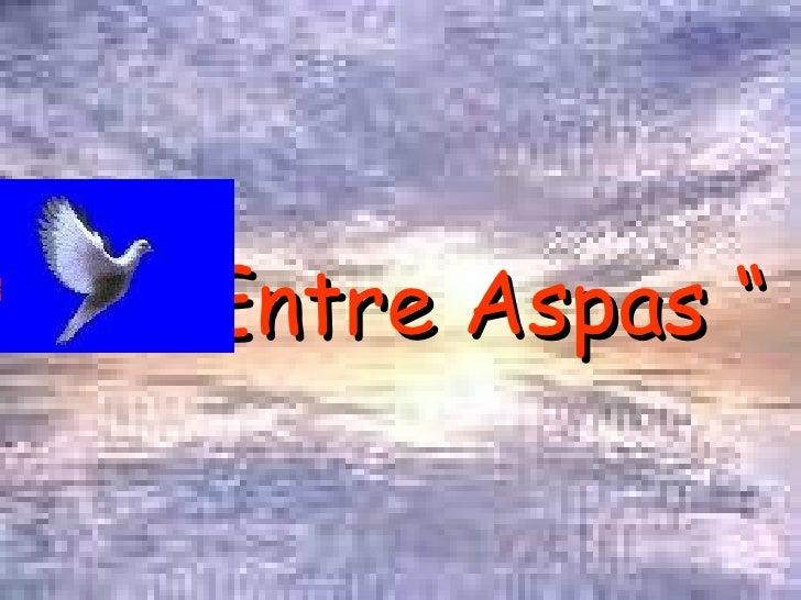 """Entre Aspas """