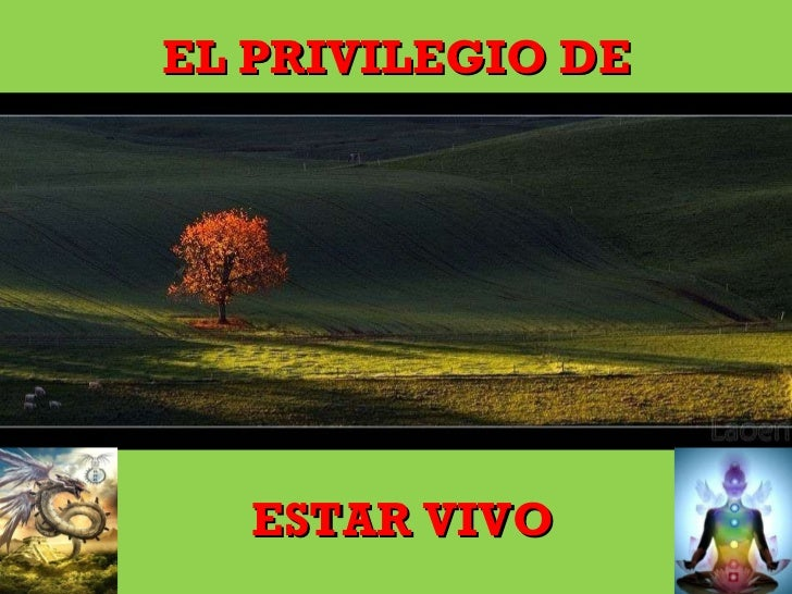 EL PRIVILEGIO DE <ul><li>ESTAR VIVO </li></ul>