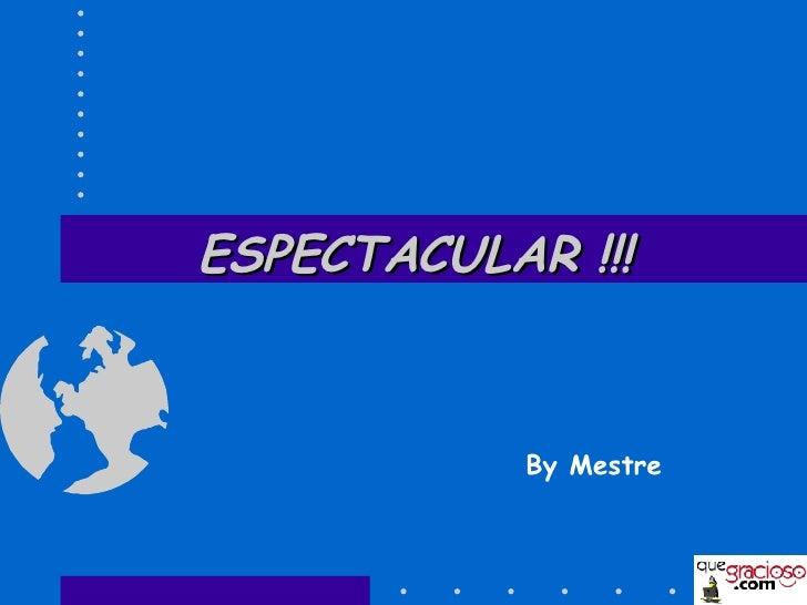 ESPECTACULAR !!! By Mestre
