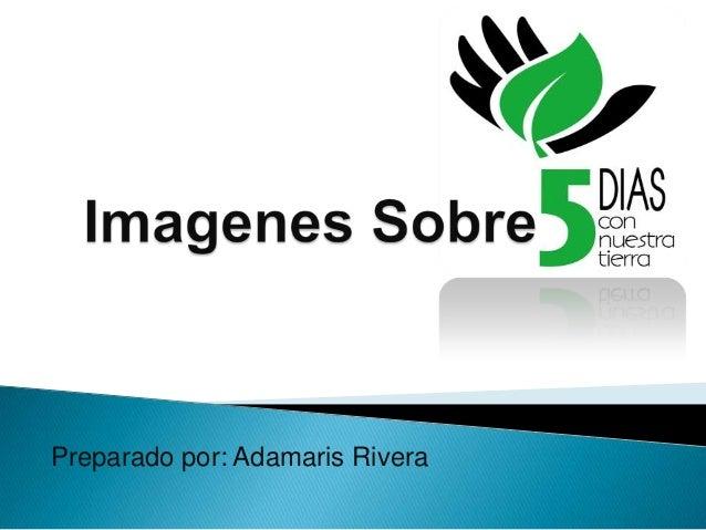 Preparado por: Adamaris Rivera