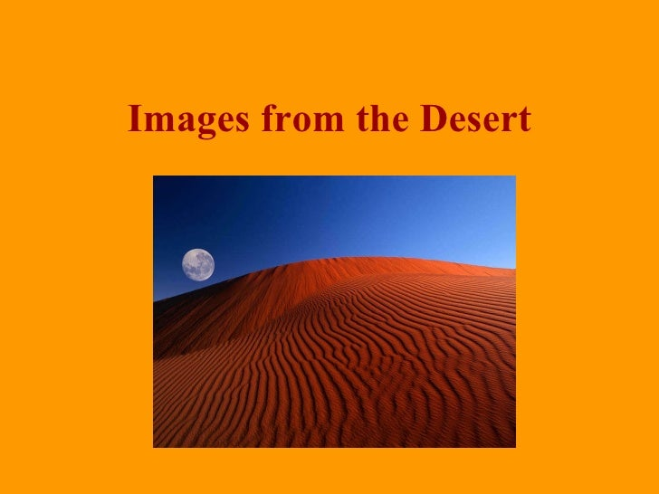 Images From The Desert