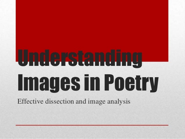 Understanding Images In Poetry