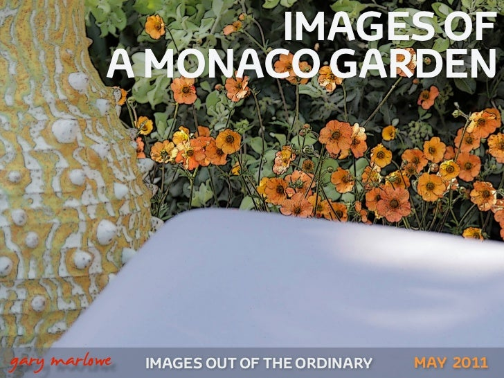 IMAGES OF               A MONACO GARDEN!    gary marlowe   IMAGES OUT OF THE ORDINARY   MAY 2011