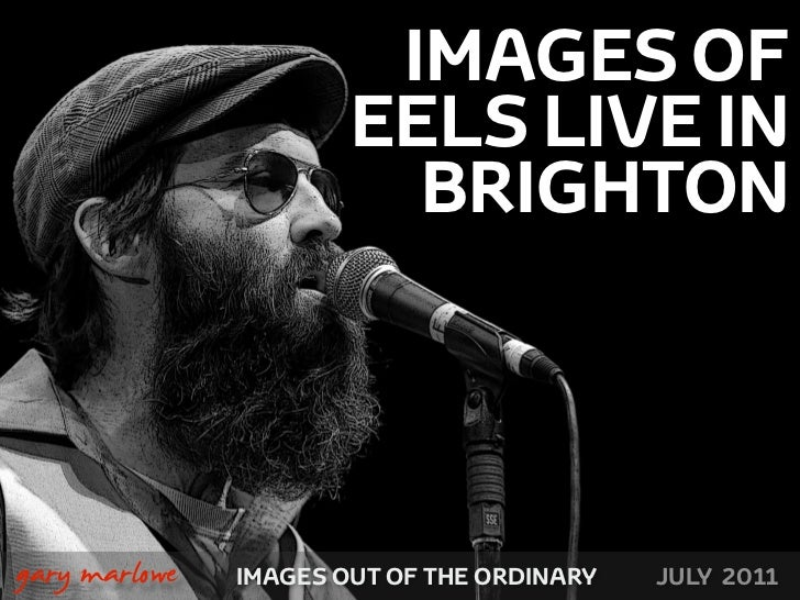 IMAGES OF                           EELS LIVE IN                             BRIGHTON!    gary marlowe   IMAGES OUT OF THE...