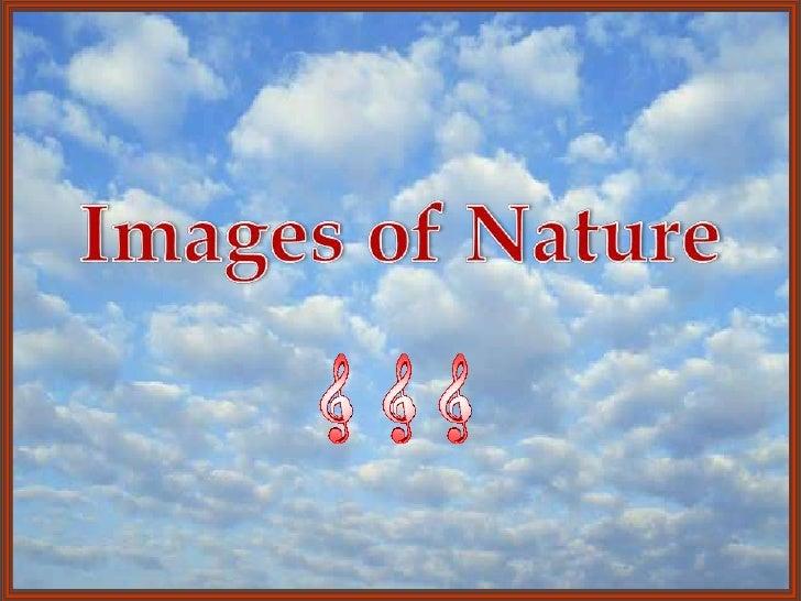 Images Of Nature 03 (V M ) (Fil Eminimizer)