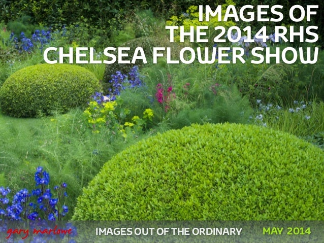 IMAGES OF THE 2014 RHS CHELSEA FLOWER SHOW ! ! IMAGES OUT OF THE ORDINARY 