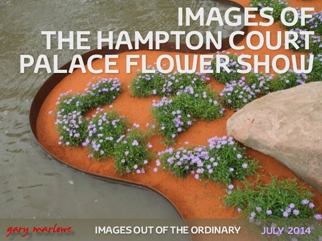 IMAGES OUT OF THE ORDINARY 
