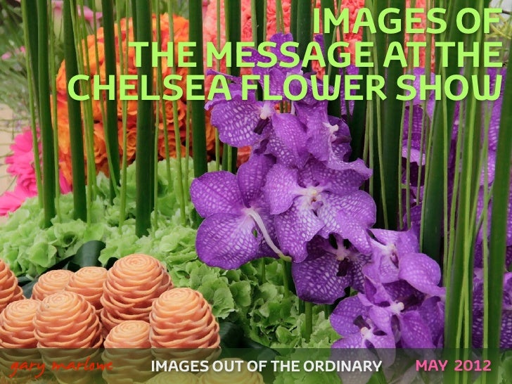Images of The Message at The Chelsea Flower Show