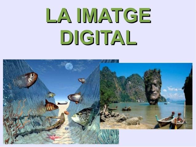 LA IMATGE DIGITAL
