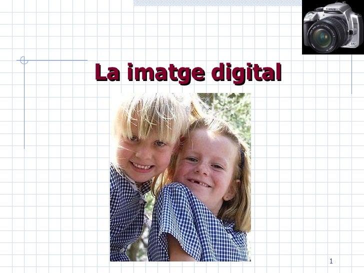 Imatge Fixa Digital