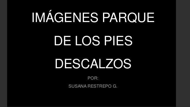 IMÁGENES PARQUE DE LOS PIES DESCALZOS POR: SUSANA RESTREPO G.