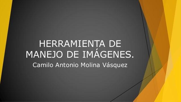 HERRAMIENTA DE MANEJO DE IMÁGENES. Camilo Antonio Molina Vásquez