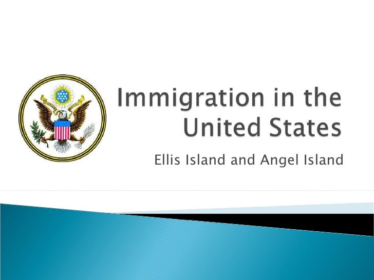 essay immigration in the united states