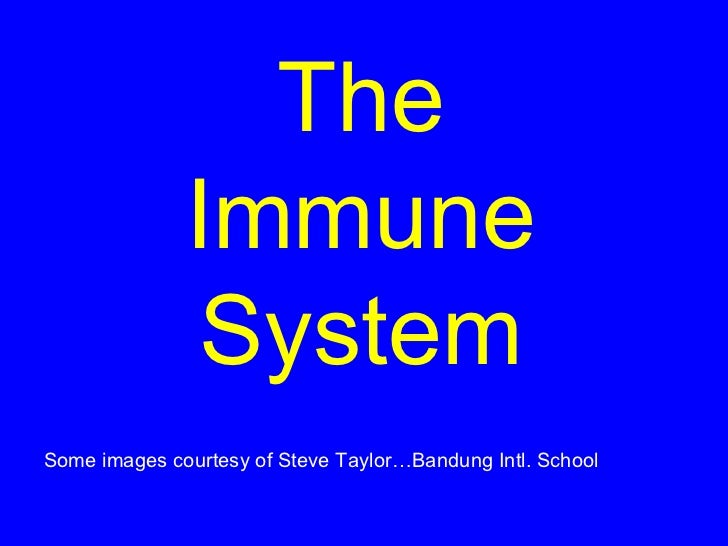 The              Immune               SystemSome images courtesy of Steve Taylor…Bandung Intl. School