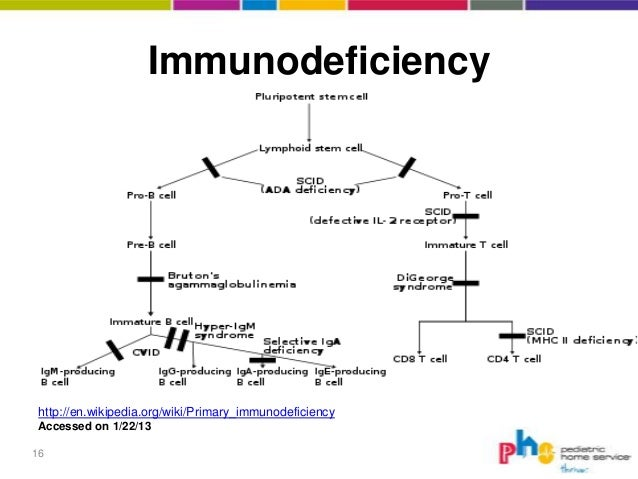 an analysis and overview of the acquired immune deficiency syndrome disease Disease or syndrome synonyms: feline acquired immune deficiency syndrome feline acquired immuno phylogenetic analysis of feline immunodeficiency virus in.