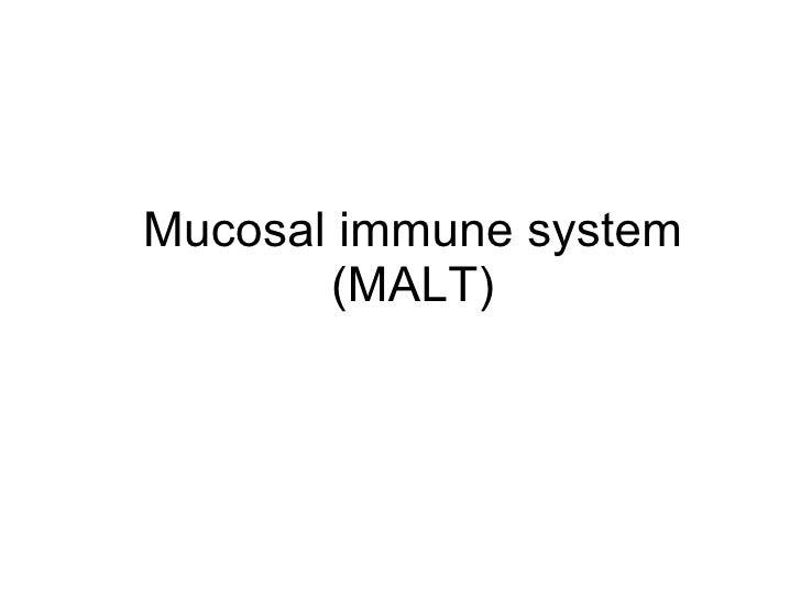 Immunology viii malt
