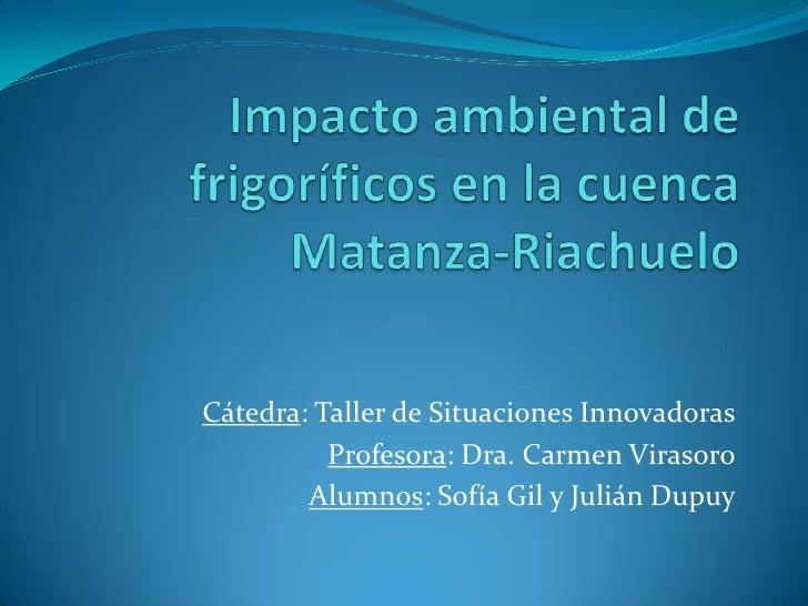 Cátedra: Taller de Situaciones Innovadoras           Profesora: Dra. Carmen Virasoro         Alumnos: Sofía Gil y Julián D...