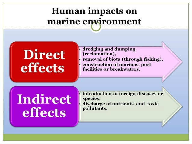 International business environment impacts Paper