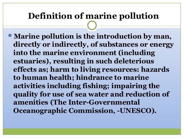 water pollution definition essay